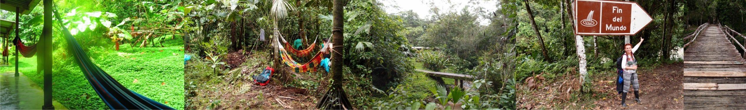 imagenes selva mocoa 1