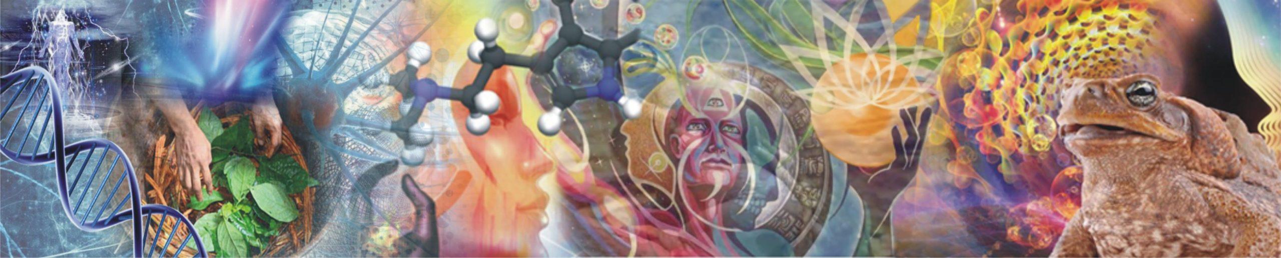 ayahuasca-y-bufo-ilustracion-de-portada-landing